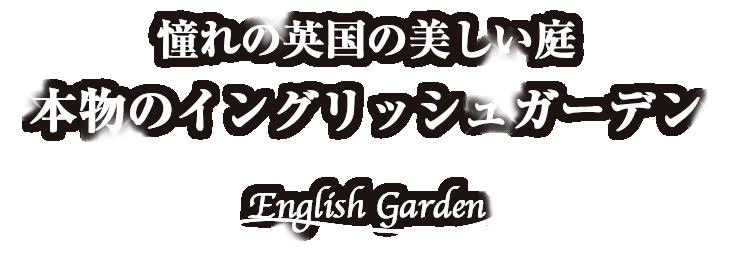 憧れの英国の美しい庭 本物のイングリッシュガーデン